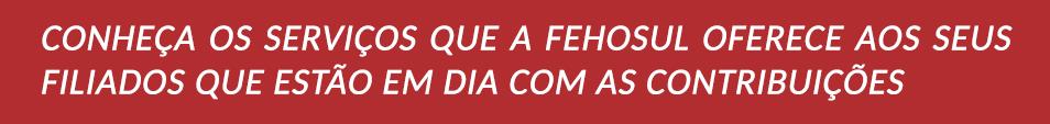 conheca_servicos_oferecidos_fehosul